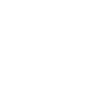 Southwest Risk